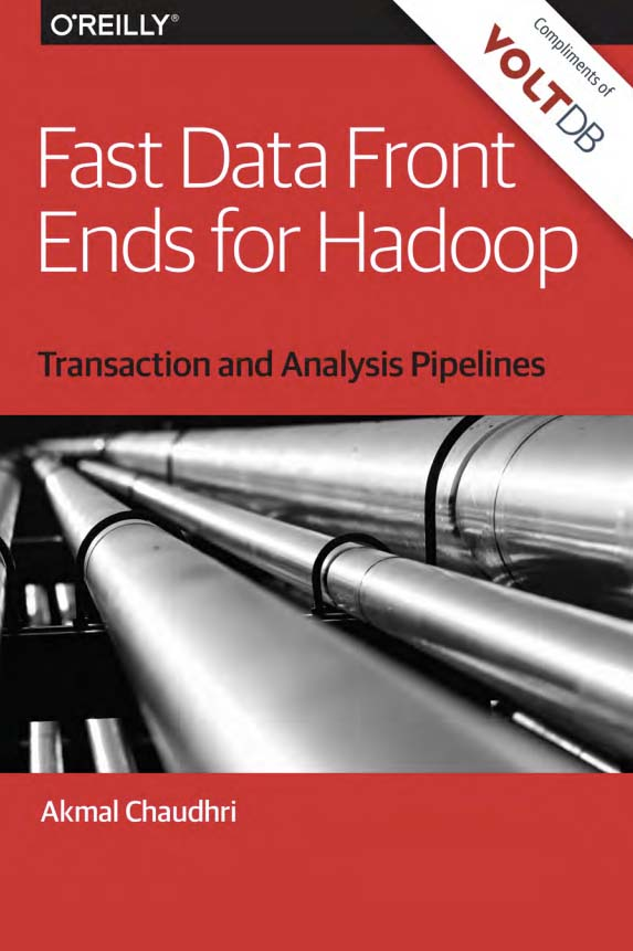 ebook Fast Data Front Ends For Hadoop-April2017