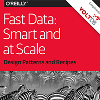 eBook: Fast Data - Smart and at Scale